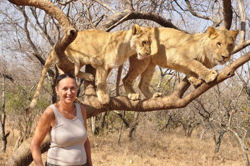 Dyrelivet har altid haft Judith Betaks store interesse, når hun rejser ud i verden. Her i nærkontakt med løver i Sydafrika.